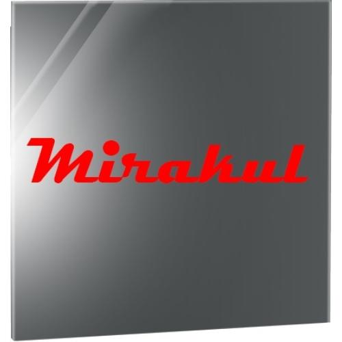 Premium infrapanel ogledalo od 400W
